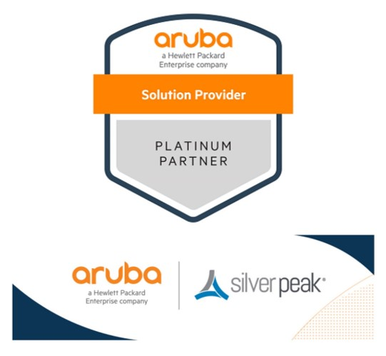 Aruba Partner of the Year logo